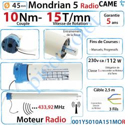001Y5010A151MOR Moteur Came Radio 10/15 Mondrian R5 Diamètre 45 Fins de Courses Progressifs