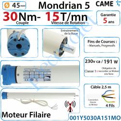 001Y5030A151MO Moteur Came Filaire 30/15 Série Mondrian 5 Diamètre 45 Fins de Courses Progressifs