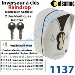 1137 Inverseur à Clés Raindrop Elsamec et Déverrouillage de l'Electro-frein en Applique 5 A sous 230 vca ip54