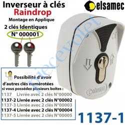 1137-1 Inverseur à Clés n°1 Raindrop Elsamec et Déverrouillage de l'Electro-frein en Applique 5 A sous 230 vca ip54