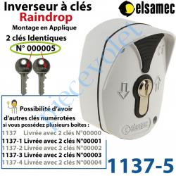 1137-5 Inverseur à Clés n°5 Raindrop Elsamec et Déverrouillage de l'Electro-frein en Applique 5 A sous 230 vca ip54