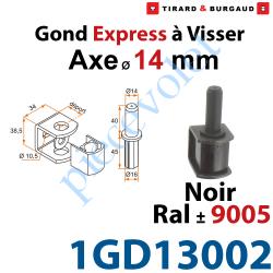 1GD13002 Gond Express à Visser en Acier Axe ø 14 mm en Matériau Composite Noir ± Ral 9005