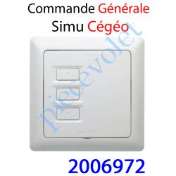 2006972 Commande Générale de Groupe ou de Sous-Groupe Simu Cégéo