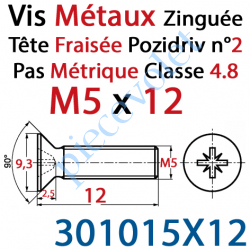 301015X12 Vis Métaux Tête Fraisée Pozidriv Zinguée 5 x 12 mm Classe 4.8 Din 965