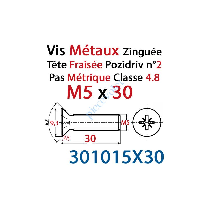 301015X30 Vis Métaux Tête Fraisée Pozidriv Zinguée 5 x 30 mm Classe 4.8 Din 965