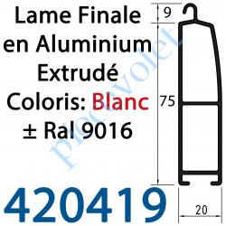 420419 Lame Finale Aluminium 75 x 20 mm Coloris ± Ral 9016 Blanc
