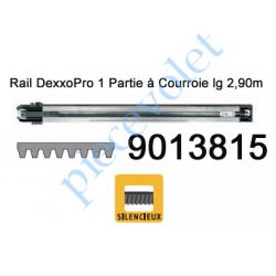 9013815 Rail Monobloc à Courroie 30 000 Cycles lg 2,90m pour Dexxo Pro