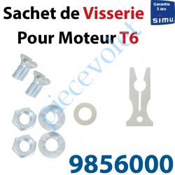 9856000 Sachet de Visserie & Rondelle pour Support Moteur T6 en C