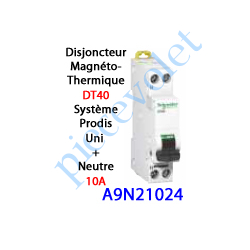 A9N21024 Disjoncteur Magnétothermique DT40 Prodis Peignable Uni + Neutre 10 Ampères Courbe C-6kA 1 Mod