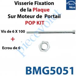 BMG5051 Vis 6 x 100 + Ecrou M6 Spider pour Fixation de la Plaque sur Moteur de Portail Nice Pop Kit