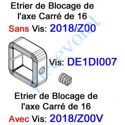 DE1DI007 Vis Pointeau Tête Fendue de 6 x 6 mm pour Bague de Blocage Carré de 16 2018/Z00