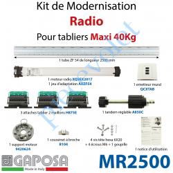 MR2500 Kit de Motorisation Radio Avec Emetteur Mural Largeur Maxi 2500mm Poids Maxi 40 kg